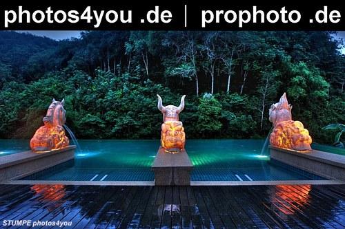4you_pro.JPG