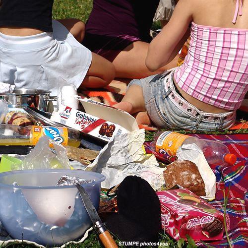 picknick_berlin.jpg