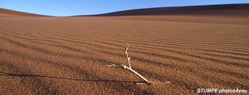 africa_desert.jpg