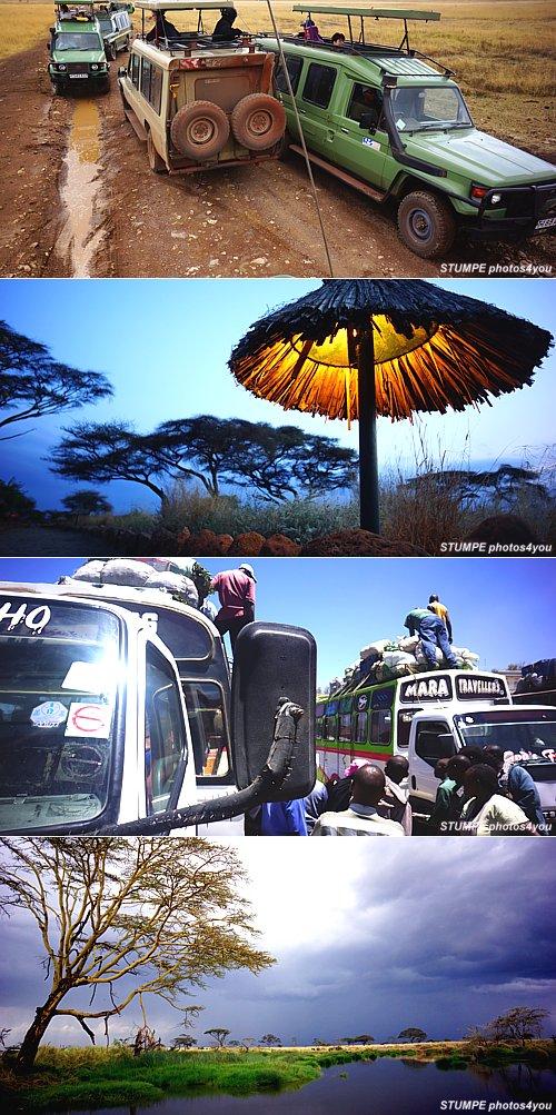afrika_2012.jpg